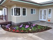 Landscaping in front of Guest Room, February 6, 2010