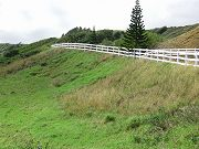 Upper Slope Next to Road Planted with Native Hawaiian Plants
